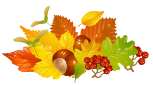 transparent_fall_leaves_and_chestnuts_picture