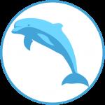 logo_delfini