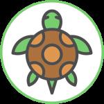 logo_tartarughe